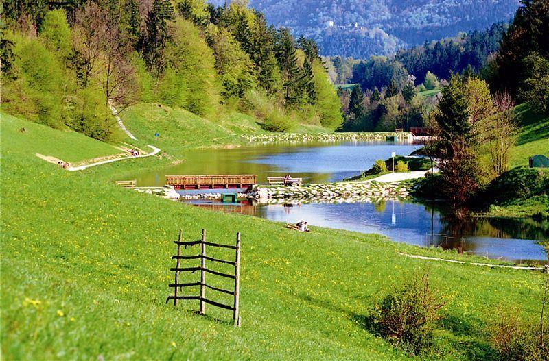 Jezero Zreče