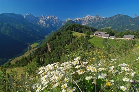 The Logar Valley
