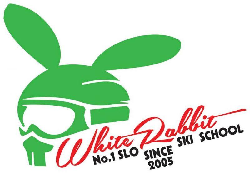 Beli zajec