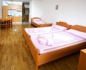 Apartma Koper 1 - Apartmaji Vidic